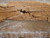 diagnostic termites traitement des termites caen rouen normandie. Black Bedroom Furniture Sets. Home Design Ideas